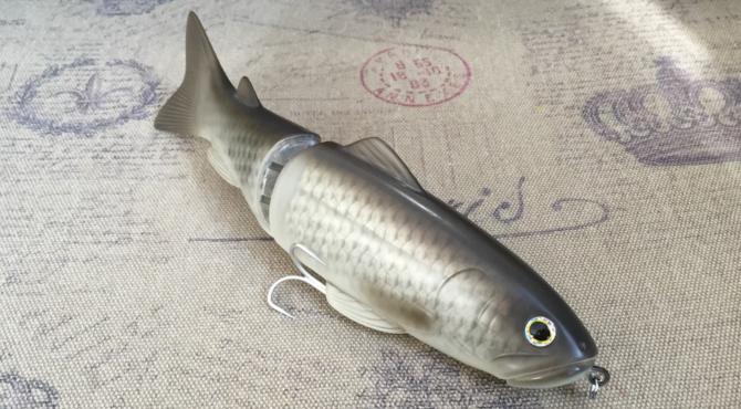 鯉カラー250