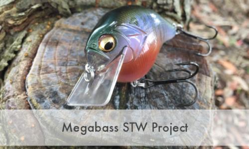 メガバス STW  プロジェクト