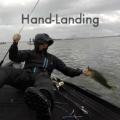 究めよ!バス釣りはハンドランディングが面白い!上手くやる方法やコツなど(しょんない独り言)